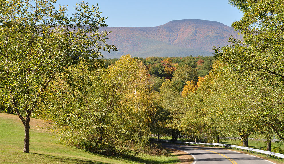 Cairo New York Catskill Mountain Views